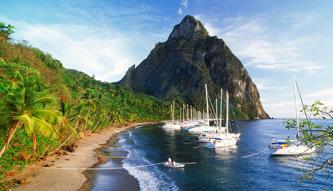Sailboats anchored by palm tree lined beach with mountain
