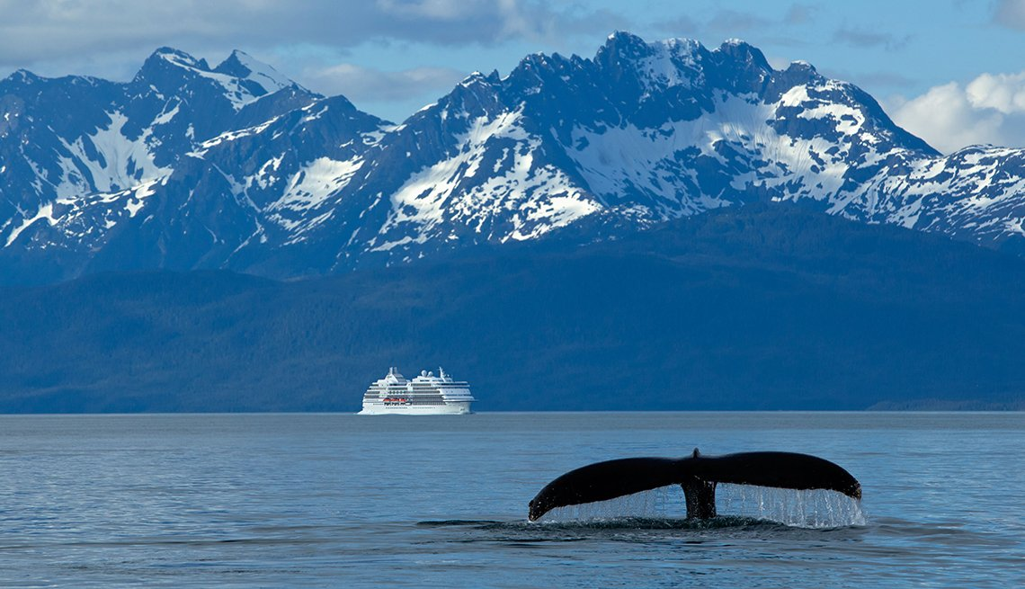 Humpback Whale fluking in Lynn Canal with a cruise ship in the distance, Inside Passage
