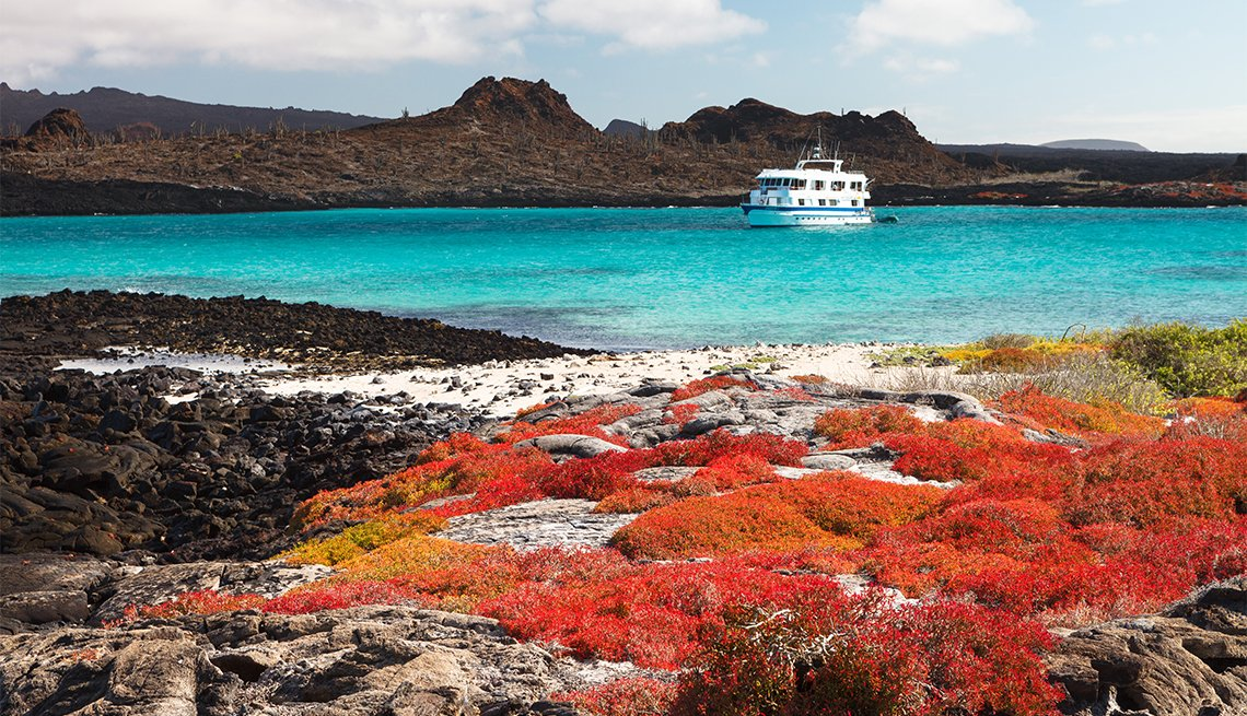 Paisaje de la Isla Santa Fe con vegetación roja, océano turquesa y un crucero en el fondo, Islas Galápagos