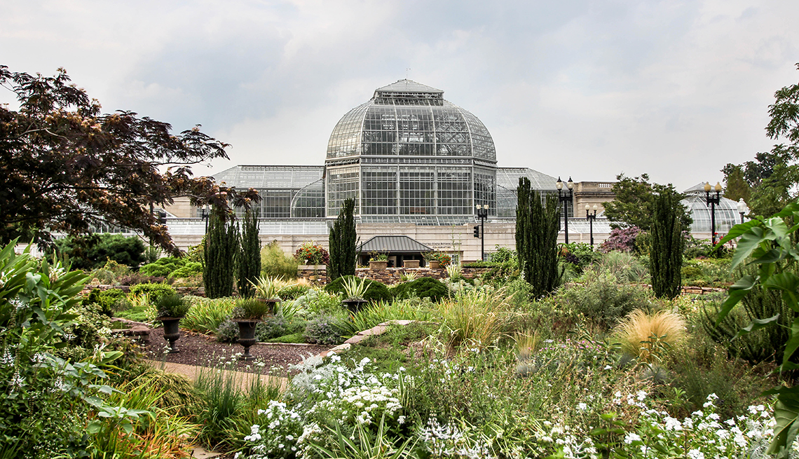 item 4 of Gallery image - botanic garden greenhouse building surrounded by plants