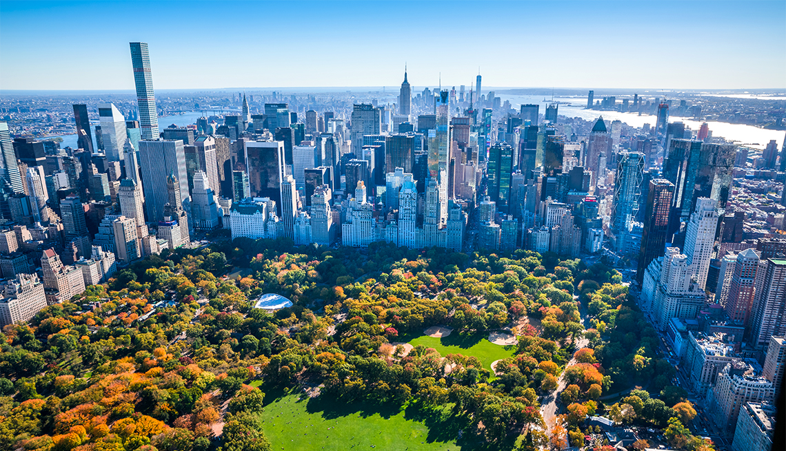 New York City skyline aerial view with Central Park