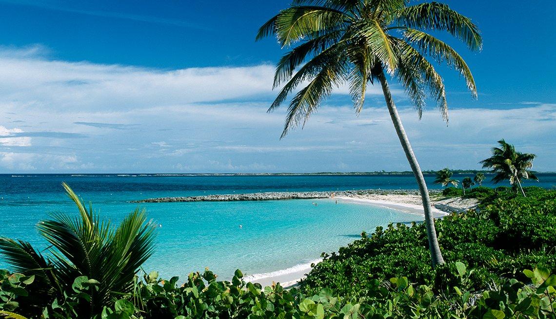 item 11 of Gallery image - Paradise Island, Nassau, Bahamas