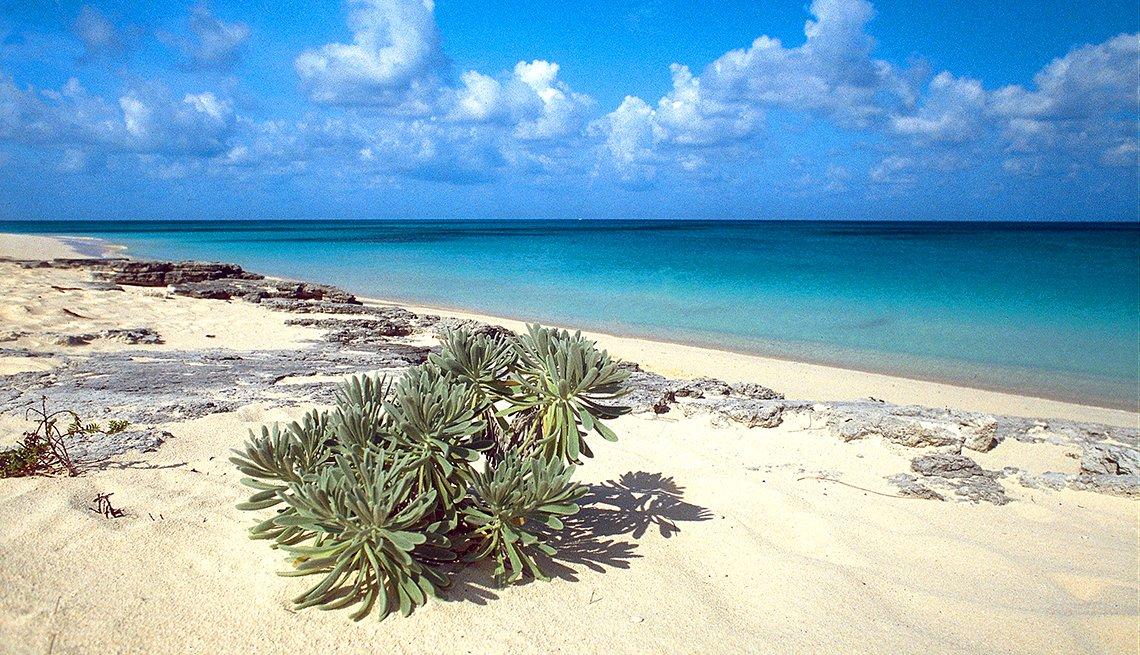 Bahamas Long Bay San Salvador