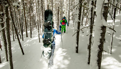 Skier and snowboarder hiking through forest in Vail, CO