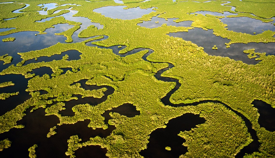 Los Everglades, Florida - 10 maravillas naturales en Estados Unidos