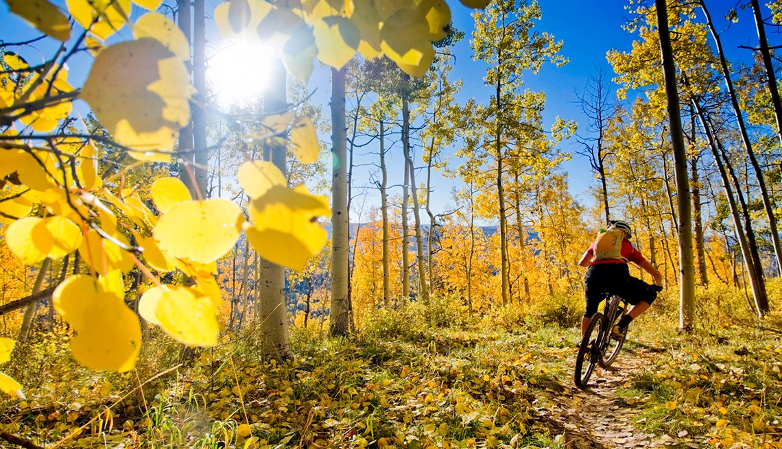 Person riding mountain bike on trail, cities for outdoor fun