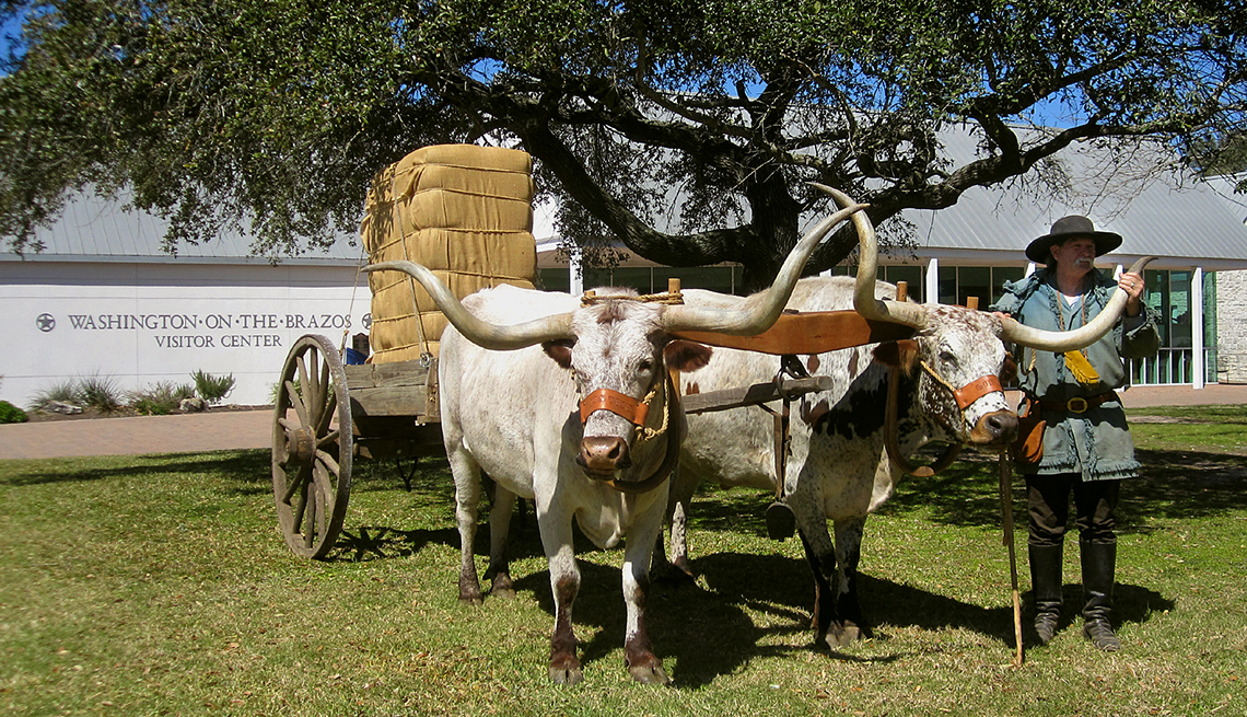 Washington-on-the-Brazos State Historic Site with oxen pulling a cart, affordable winter vacations