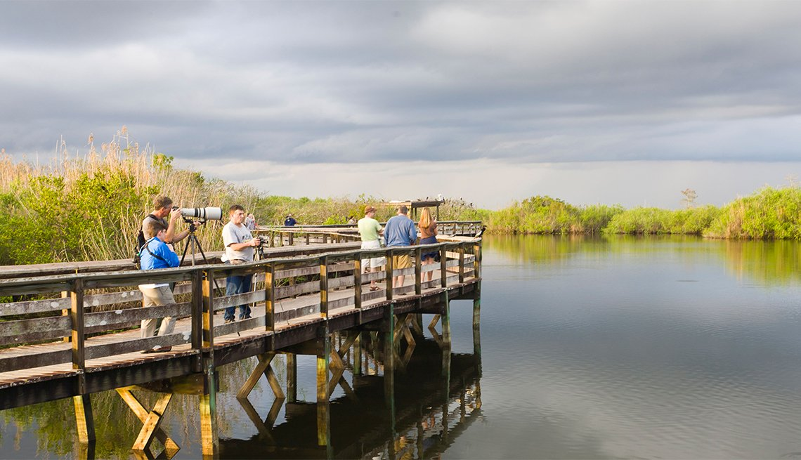 sightseers along the Anhinga Trail in the Royal Palm section of the Everglades National Park