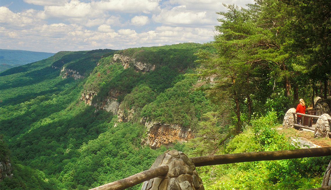 item 9 of Gallery image - View from the Rim Trail, Cloudland Canyon State Park