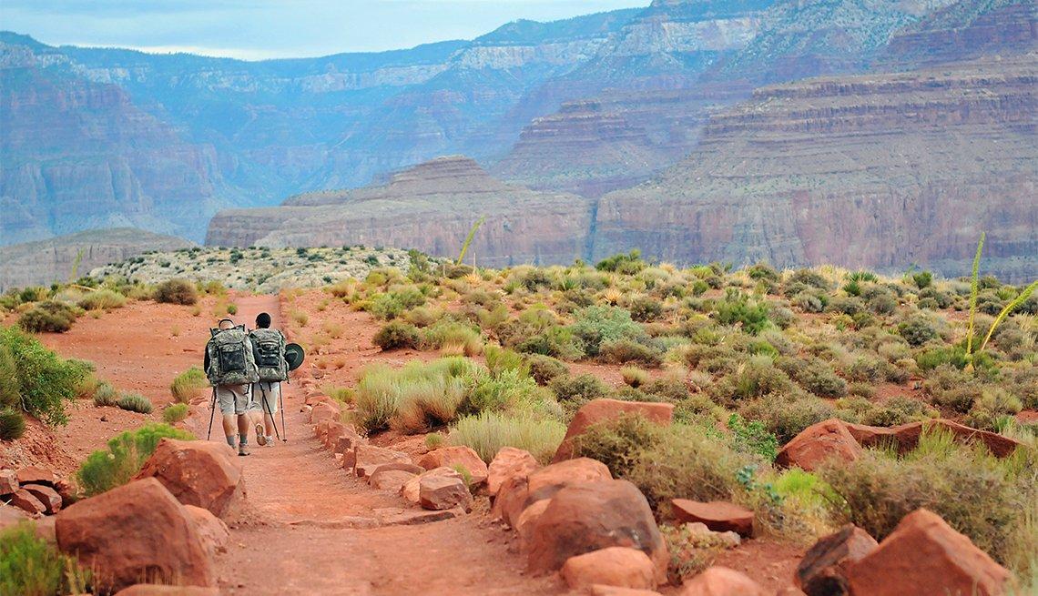 Dos hombres caminando en el Parque Nacional del Gran Cañón.