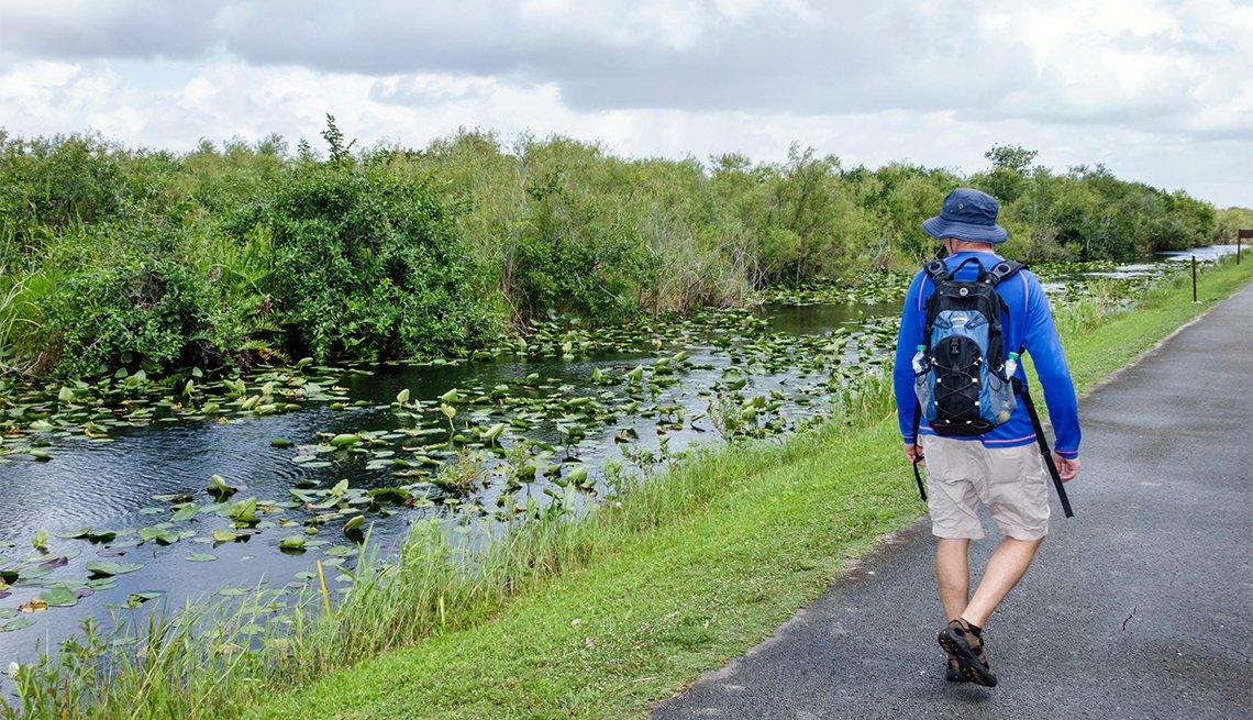 Hombre caminando por un sendero en el Parque Nacional Everglades
