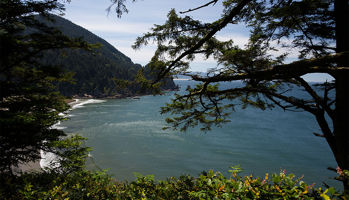 item 1 of Gallery image - Smugglers Cove from Cape Falcon Trail in Oswald West Oregon State Park