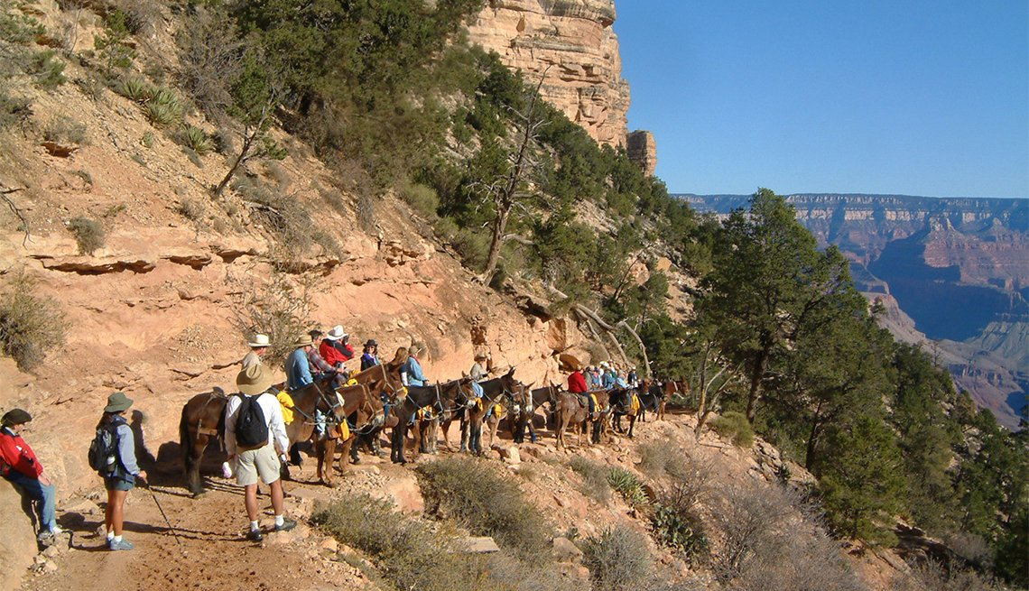item 5 of Gallery image - Personas montando en mula hacia el Gran Cañón
