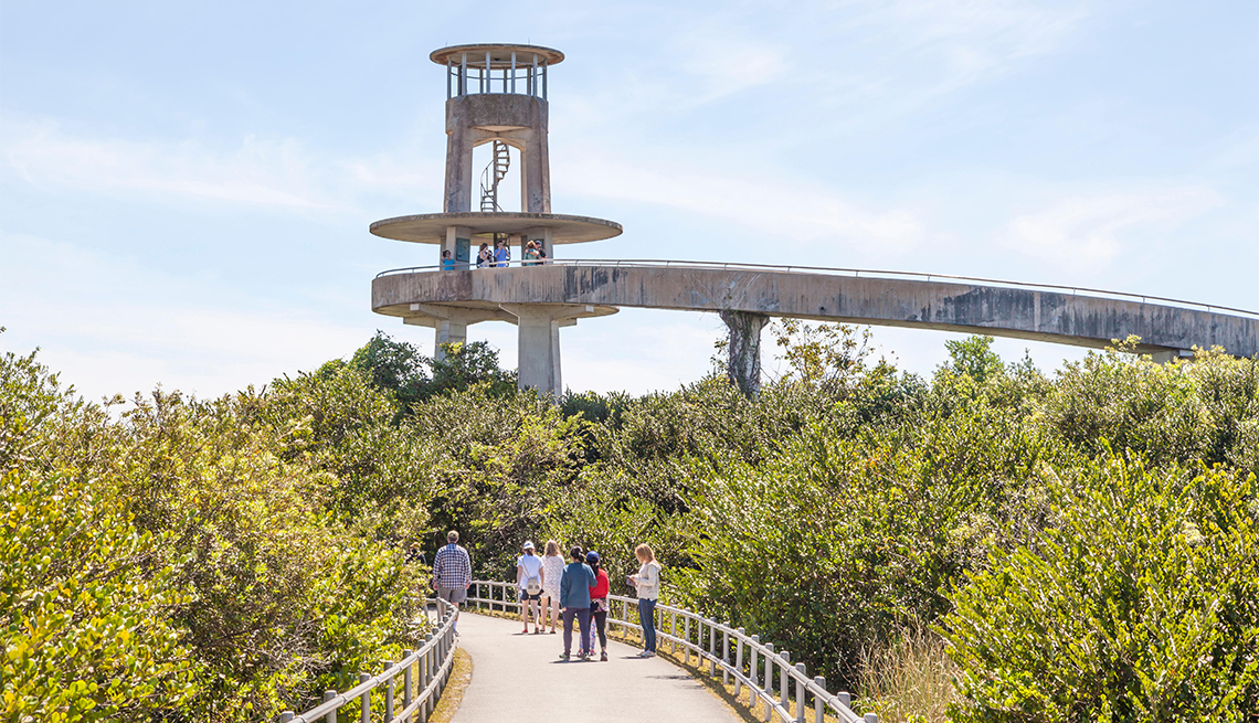 item 5 of Gallery image - The Shark Valley Observation Tower in the Everglades National Park