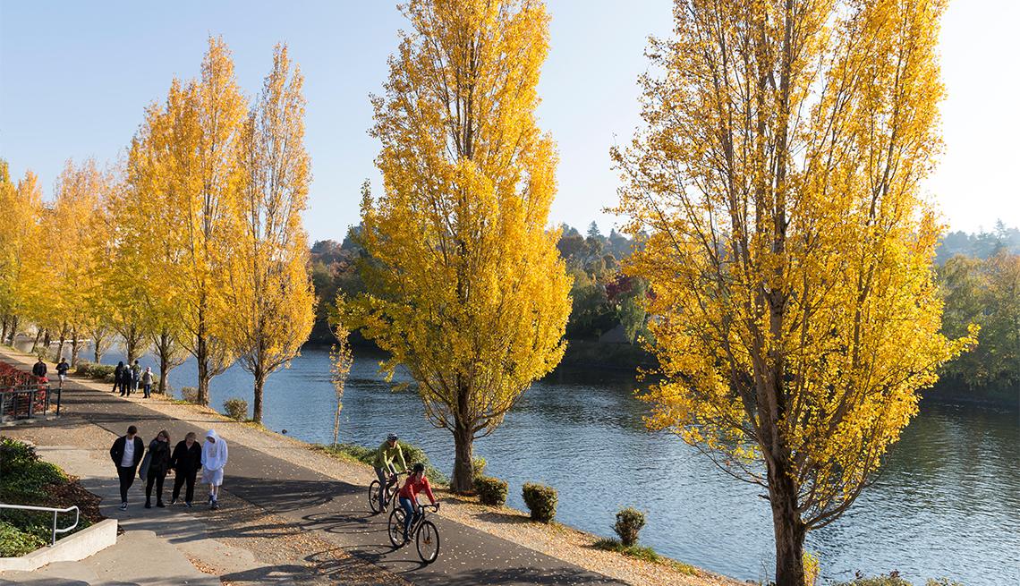 item 2 of Gallery image - Ciclistas disfrutan del color del otoño a lo largo del sendero Burke-Gilman