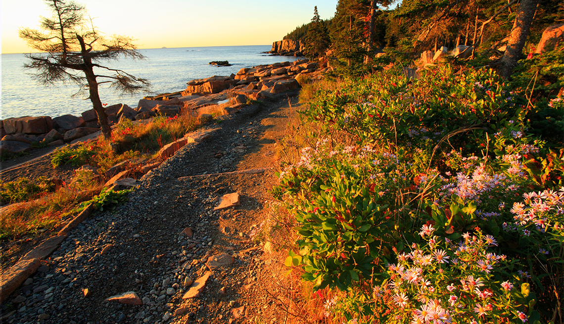 Sunrise, Ocean Trail, Otter Cliff, Acadia National Park