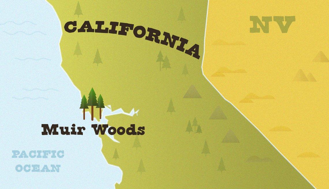 Mapa muestra la ubicación del Monumento Nacional Muir Woods