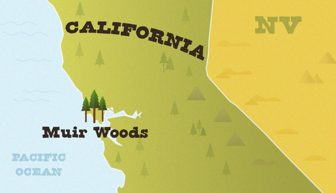 locator map of california with muir woods shown