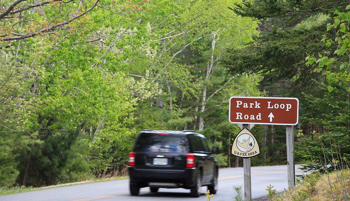 Park Loop Road in the Spring, Acadia National Park, Maine