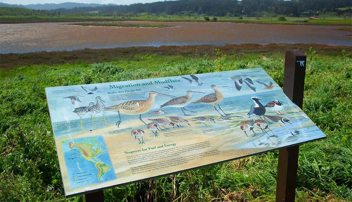 item 4 of Gallery image - Letrero explica sobre la fauna silvestre