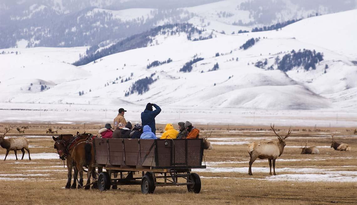 item 6 of Gallery image - National Elk Refuge