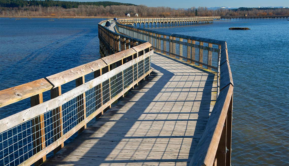 item 2 of Gallery image - Sendero de madera sobre el agua