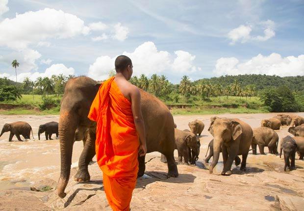 Sri Lanka - 10 escapadas a islas ideales