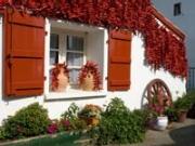Ajís decorativos en la fachada de una casa - Imágenes del país Vasco