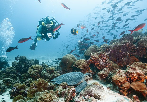 Islas Galápagos, Ecuador - De viaje por los países más felices de América Latina