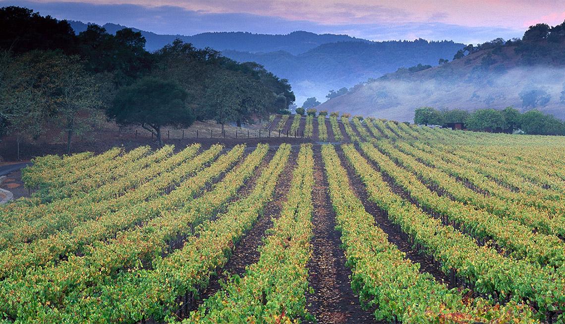 Región vitivinícola de Napa Valley