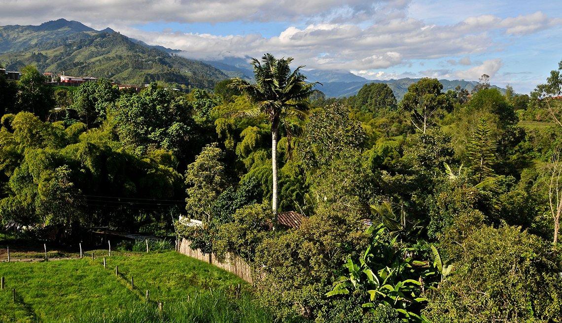 Patrimonios culturales que no te puedes perder en Latinoamérica - Salento, Colombia