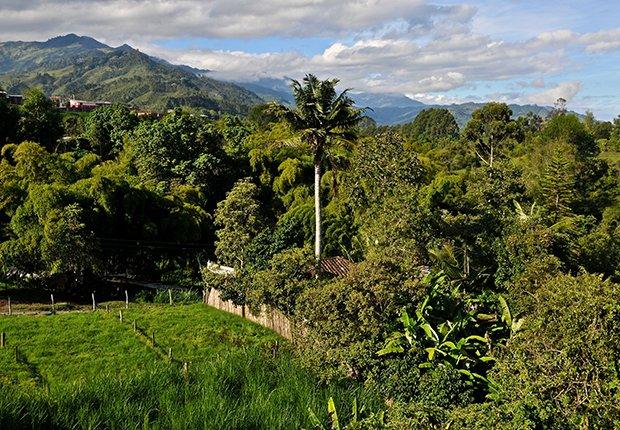 Patrimonios culturales que no te puedes perder en Latinoamérica - Salento Colombia