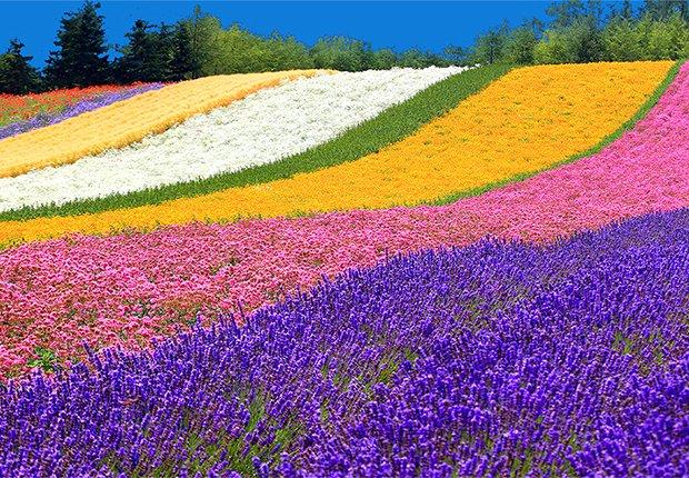Lugares más coloridos del mundo