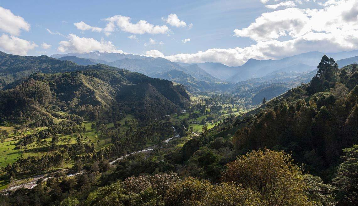 Parques naturales en América Latina - Valle del Cocora, Colombia