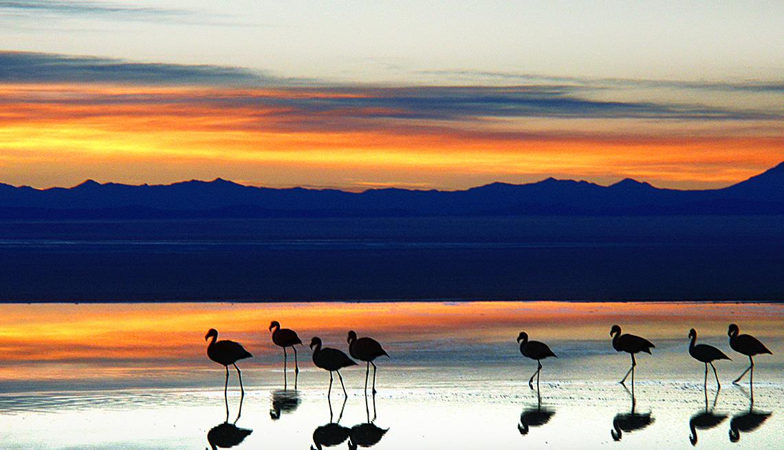 sunset, uyuni, salt, desert, Bolivia