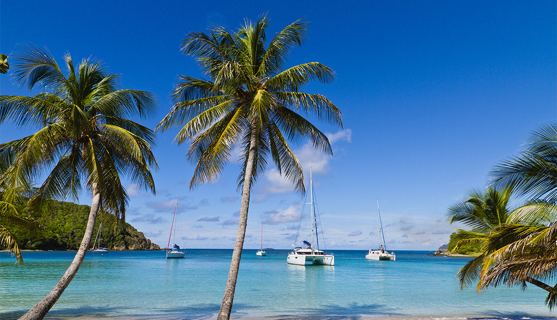 scenic photo of Salt Whistle Bay in the Grenadines with catamarans at seas
