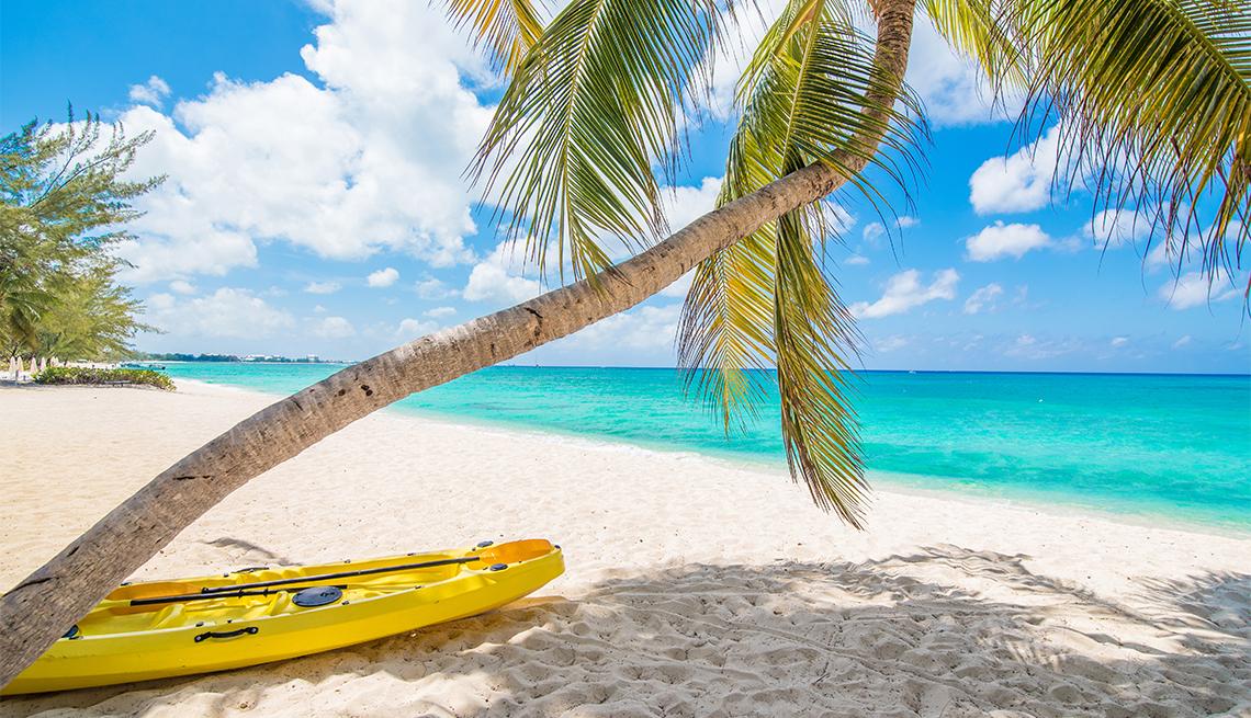 Kayak amarillo debajo de una palmera