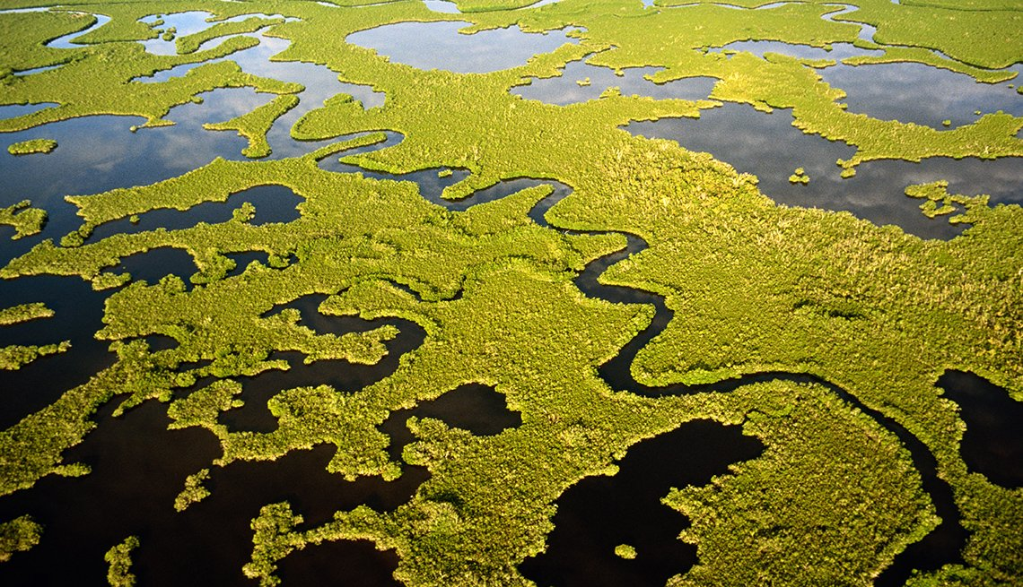 Aerial View, Grass, Water, Everglades National Park, America's Top 10 Natural Wonders