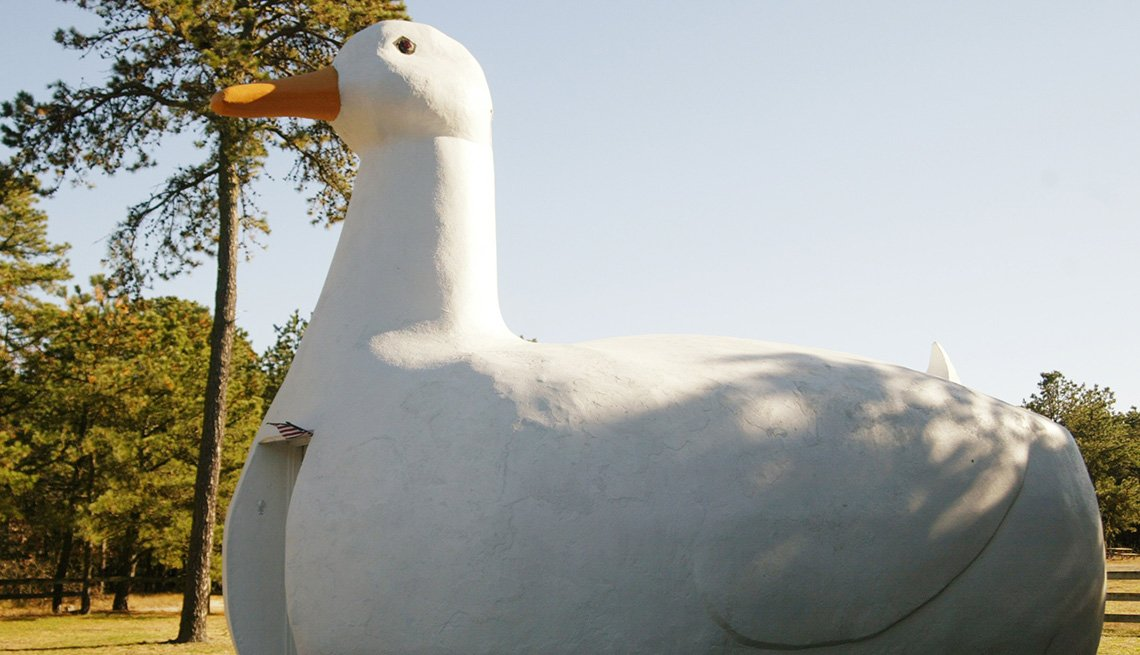 Big Duck Building In Flanders New York, Bizarre Building