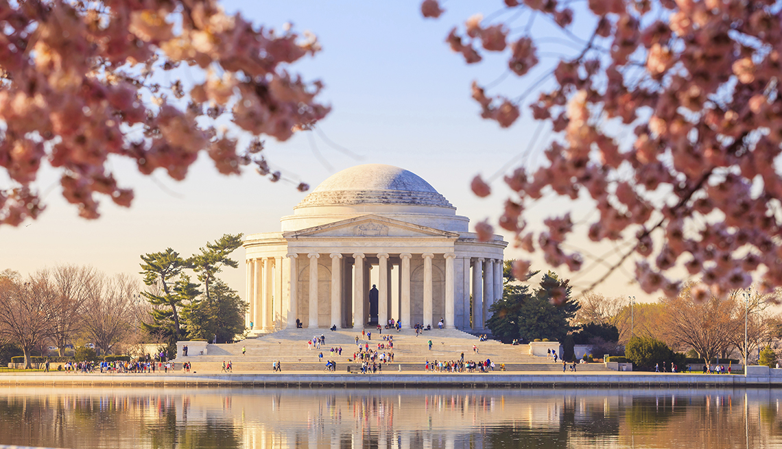 Jefferson Memorial Framed by Cherry Blossoms, Washington, D.C. Monuments and Memorials