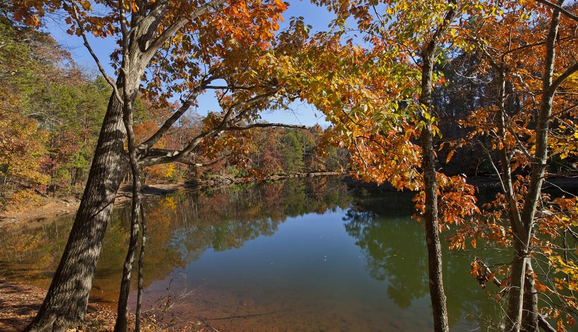 Autumn Trees Adorned Lake Norman In North Carolina, Best Fishing And Boating Spots In USA