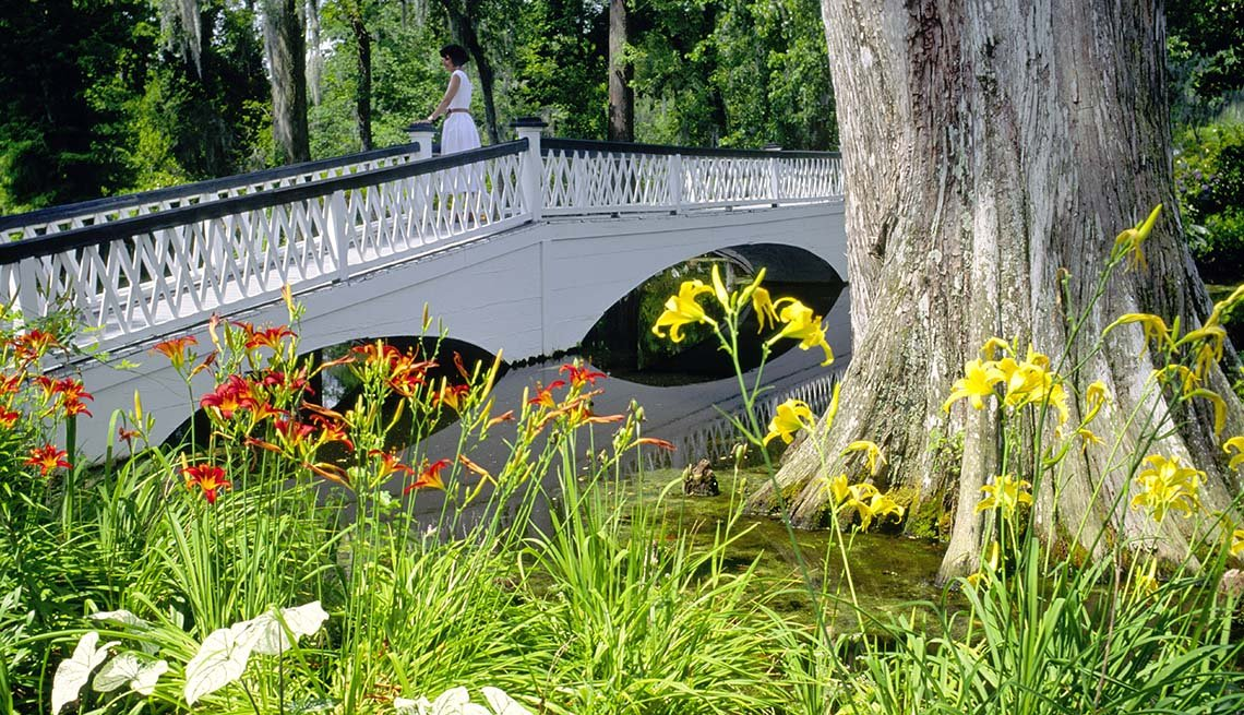 Woman Looks At The Pretty Magnolia Gardens From A Footbridge In Charleston South Carolina, Amazing USA Gardens