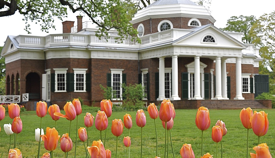 The Beautiful Tulips On The Monticello Property In Charlottesville Virginia, Amazing USA Gardens