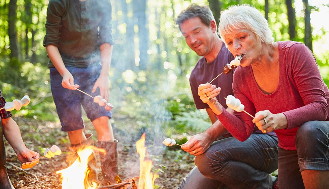 Marshmallow Roasting, Family Outdoors, Forest Campfire, Summer Camps for Adults