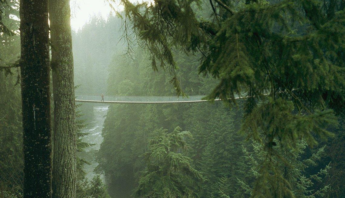 The Capilano Suspension Bridge In Vancouver Canada, Must See Bridges