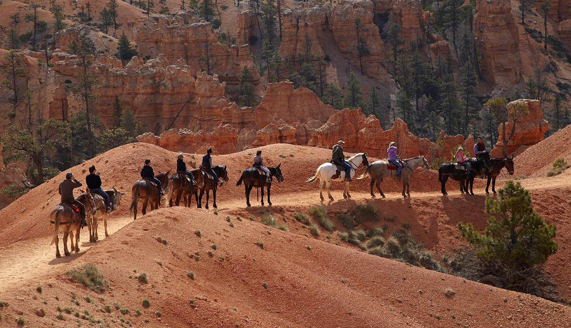 Hore Trekkers In Bryce Canyon National Park In Utah, National Parks Experiences