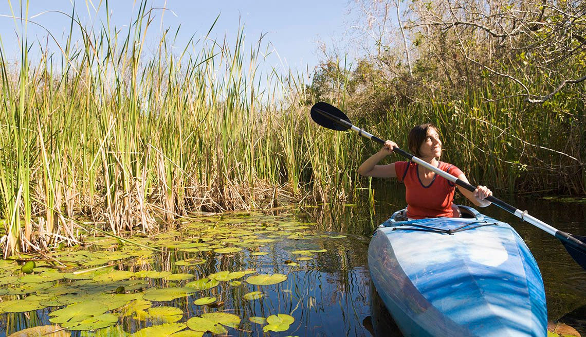 Woman Paddleboats Through A Mangrove In The Everglades, National Parks Experiences