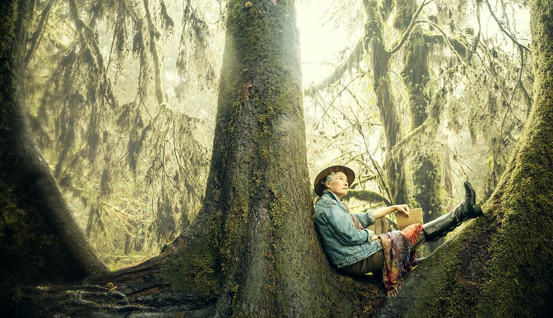 Author Nevada Barr Sits In A Tree In The Hog Forest Inside The Olympic National Park, Nevada Barr On National Parks