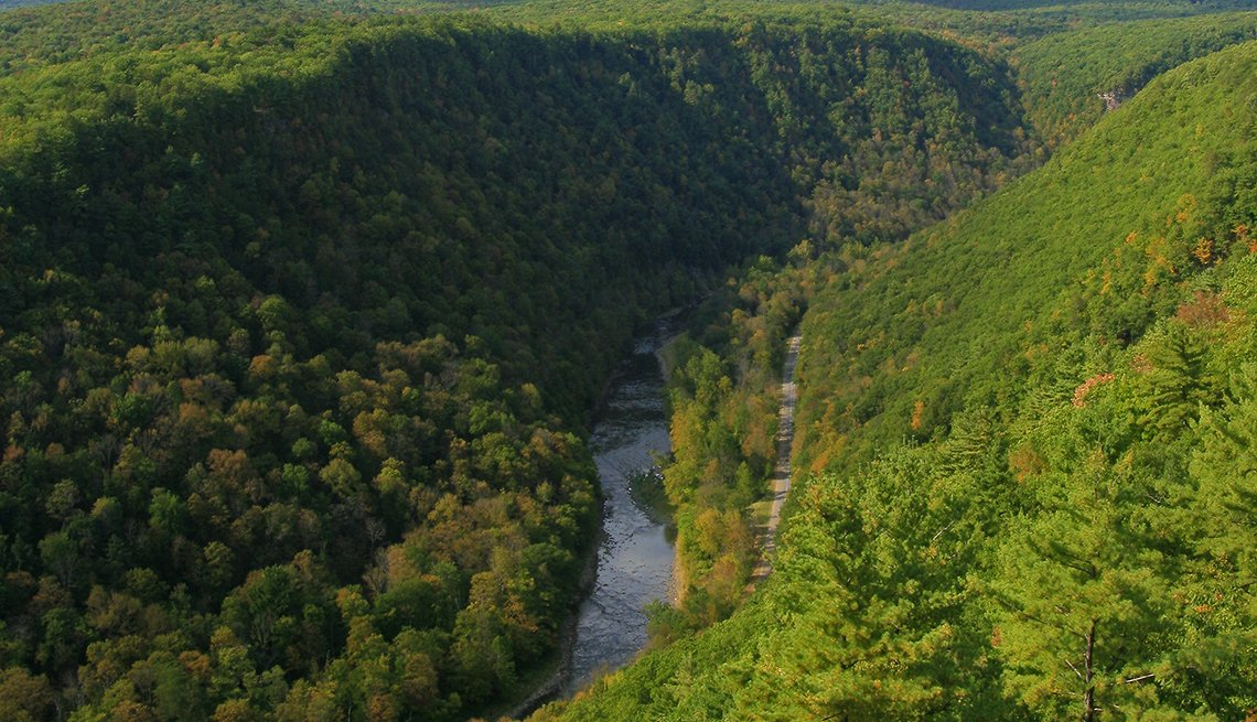 Vista de Pine Creek Gorge, llamado Gran Cañón de Pensilvania