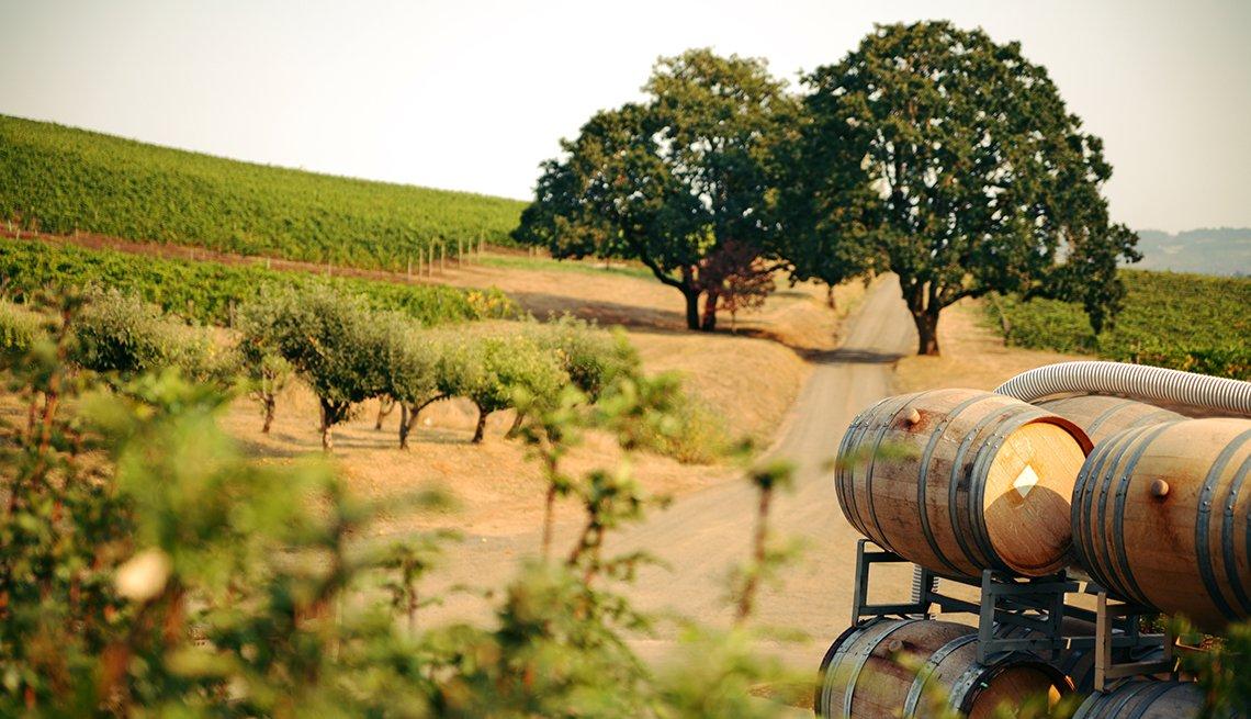 Barriles de vino apilados en un viñedo.
